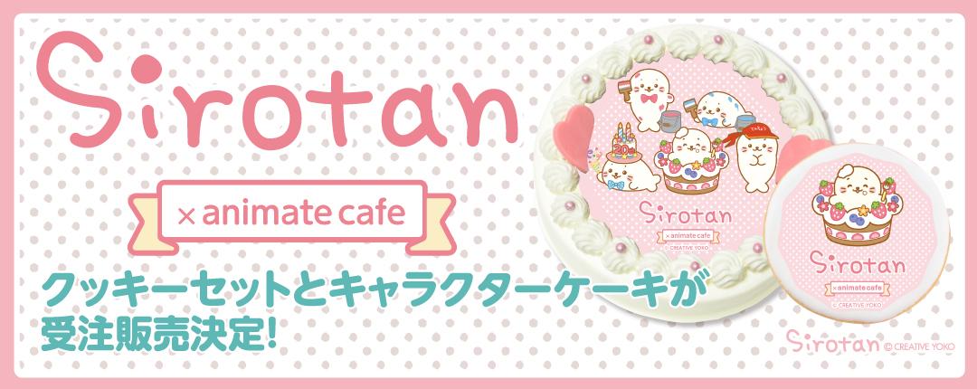 【アニメイトカフェ × しろたん】しろたんのクッキーセットとキャラクターケーキが発売決定!